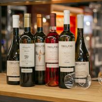 Tbilvino Aktions-Weinsortiment Georgien 6 x Weißwein 0,75l